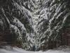 es_schneit